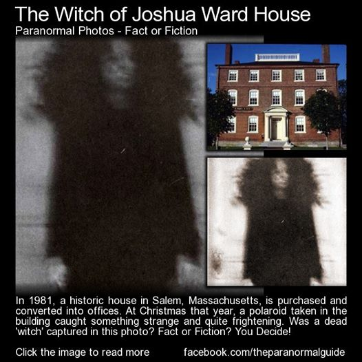 The Wicked Witch Of Joshua Ward World Mysteries