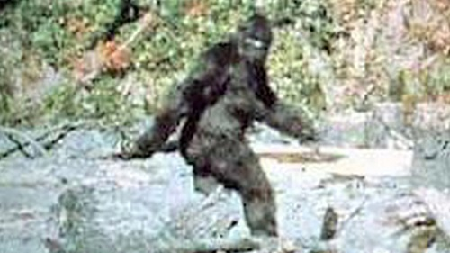 Top 10 Bigfoot Sightings of the Last 5 Years