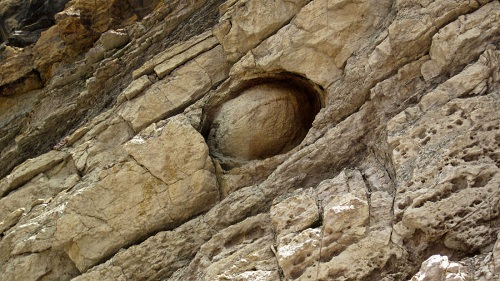 Strange Cliff Face Appears To Lay Eggs Every 30 Years